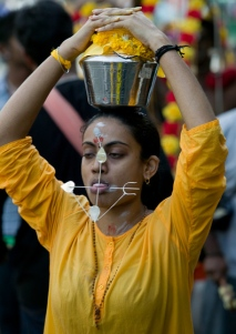 Thaipusam - urn of fresh milk